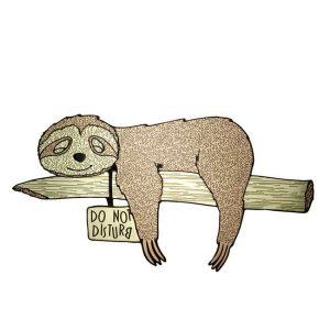 Speedy-Sloth-Metal-Decal-Sticker-JAT-Creative-Products